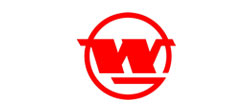 泰格尔合作客户-武汉钢铁集团